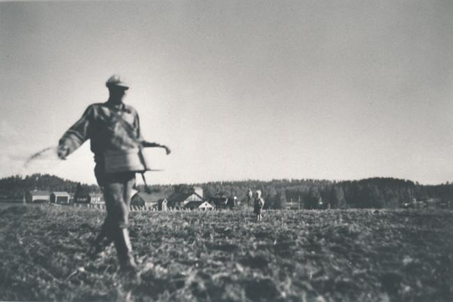Mies kylvää peltoa heittämällä vakasta siemeniä. Vanha mustavalkokuva.